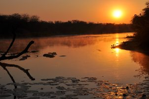Kruger National Park hours: Lakeside sunset